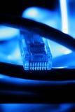 Câble d'Ethernet Photo stock