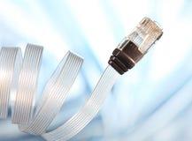 Câble de réseau Image libre de droits