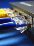 Câble et pivot de réseau. Images libres de droits