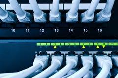 Câbles de réseau Photographie stock libre de droits