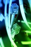 Câbles de réseau Images libres de droits
