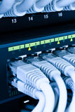 Câbles de réseau informatique Photos stock