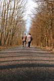 Ccoupe in forest. Old couple walking in a forest royalty free stock photography