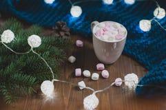 CCozy冬天家 杯可可粉用蛋白软糖 免版税库存图片