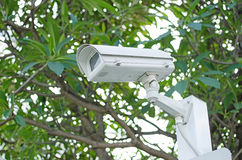 CCTV camera on a nature background Royalty Free Stock Photography