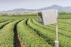 CCTV with cover box and landscape view of tea plantations. royalty free stock image