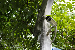 CCTV with leaves on background Royalty Free Stock Photos
