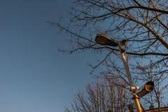 CCTV moderno em árvores e em fundos do céu foto de stock
