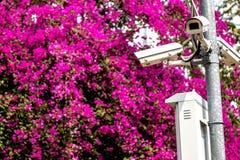 CCTV ochrona w parku obrazy royalty free