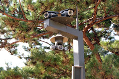CCTV in the park. Stock Photo