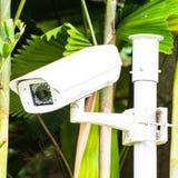 Cctv-säkerhetskamera i trädgården royaltyfria bilder