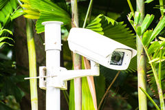 CCTV security camera royalty free stock photos