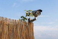 CCTV security camera on garden fence with blue sky in background Royalty Free Stock Photo