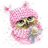CCute owl T-shirt graphics, watercolor forest owl illustration Royalty Free Stock Image