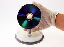 CD in the hand. Royalty Free Stock Image