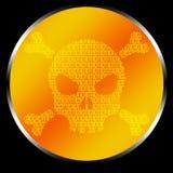 Código del cráneo Imágenes de archivo libres de regalías