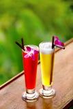 пить Экзотические коктеили в тропическом баре Каникулы Таиланда ce Стоковое фото RF