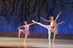 Ce conte éternel de ballet Photo libre de droits
