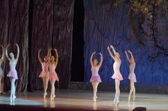 Ce conte éternel de ballet Photographie stock libre de droits