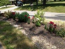 Ce jour venteux, le pollen est tombé comme l'exposition dans ce jardin de pays de printemps Image stock