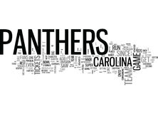 Ce qui Carolina Panthers Tickets Be Worth pour le reste du nuage de Word Image libre de droits