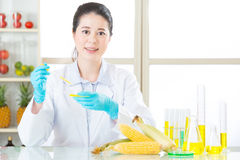 Ce qui vous pensent à la nourriture génétique de modification Image stock
