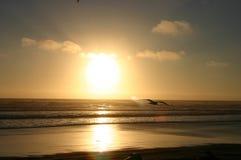 Ce soleil pour vous Image stock