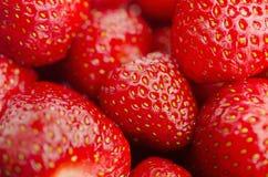Cean tvättade upp jordgubbar tätt arkivfoton