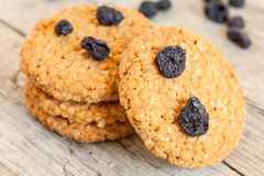 Ceareal Cookies With Dry Blueberries Royalty Free Stock Image