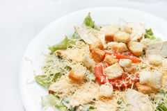 Ceasar salad Royalty Free Stock Image