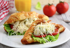 Sandwich with chicken and avocado in croissant Royalty Free Stock Photography