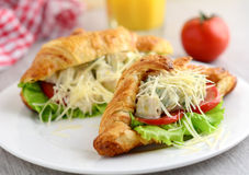 Ceasar salad with avocado in toasted croissant Stock Photos