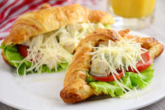 Sandwich with chicken and avocado in croissant Royalty Free Stock Images
