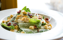 Ceasar Salad Stock Photography