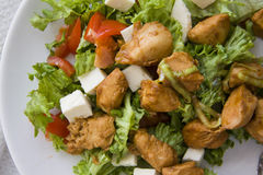 Ceasar salad with chicken and white cheese Stock Images