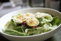 Ceasar salad Royalty Free Stock Image