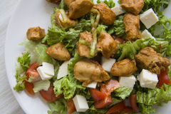 Ceasar salad closeup Royalty Free Stock Image