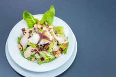 Ceasar Salad Stock Photo
