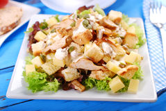 Ceasar salad. Plate of ceasar salad with grilled chicken, cheese,croutons ,lettuce and garlic sauce Stock Images