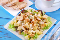 Ceasar salad. Plate of ceasar salad with grilled chicken, cheese,croutons ,lettuce and garlic sauce Royalty Free Stock Photo