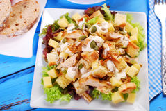 Ceasar salad Stock Image