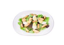 Ceaser salade Royalty-vrije Stock Foto