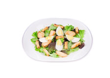 Ceaser salade. Royalty Free Stock Photo