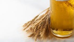 Cebada y cerveza Foto de archivo
