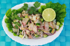 Cebiche Photos stock