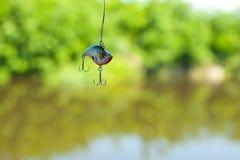 Cebo artificial de los pescados imágenes de archivo libres de regalías