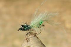 Cebo de pesca del insecto imagenes de archivo
