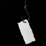 Cebo del gancho de leva y del papel con el espacio de la copia. Fotografía de archivo