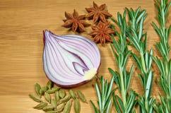Cebola com ervas Imagem de Stock
