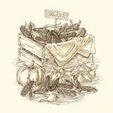 Cebola do bulbo da gravura, abóboras maduras e caixa de madeira com milho Imagem de Stock Royalty Free